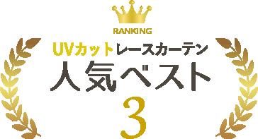 人気ベスト3
